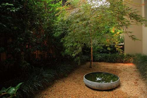 Gravel area with water bowl and Japanese Maple